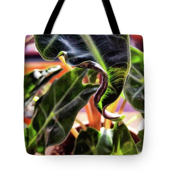 Alocasia Polly Tote Bag