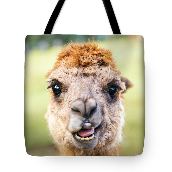 Tote Bag featuring the photograph Alpaca by Rob D Imagery