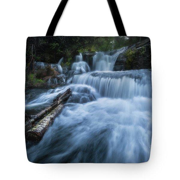 Alsea Falls Tote Bag