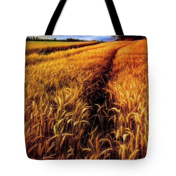 Amber Waves Of Grain Painting  Tote Bag
