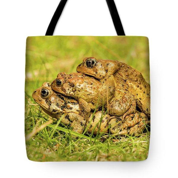 American Toad Western Brooke Pond, Grose M Tote Bag
