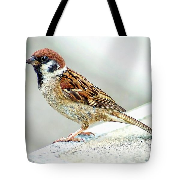 Tote Bag featuring the photograph American Tree Sparrow by Anthony Dezenzio