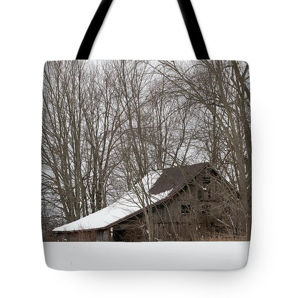 Ancient Barn Tote Bag