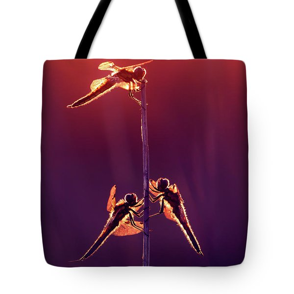 And Then I See A Lightness - Dragonflies At Sunset Tote Bag