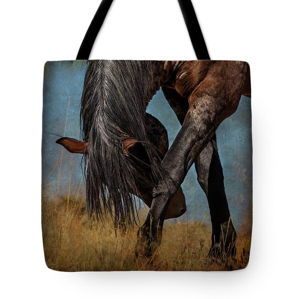 Angles Of The Horse Tote Bag