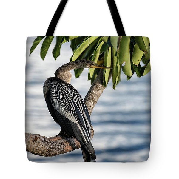 Anhinga Shore Side  Tote Bag