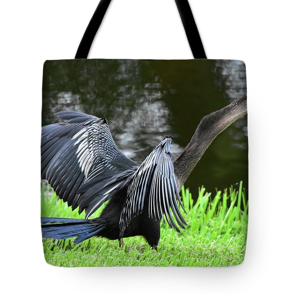 Anhinga Surprise Tote Bag