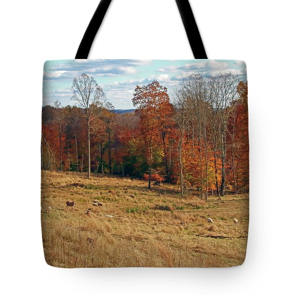 Tote Bag featuring the photograph Animals Grazing On A Fall Day by Angela Murdock