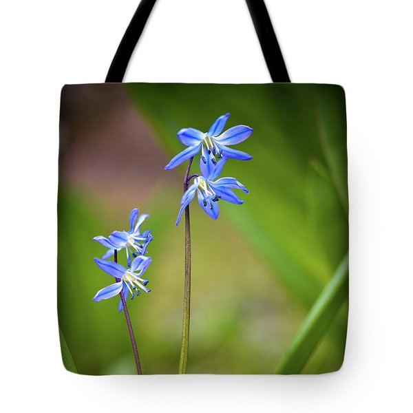 Animated Tote Bag