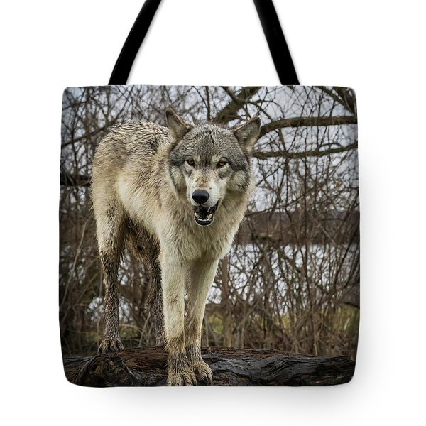 Anit I Pretty Tote Bag