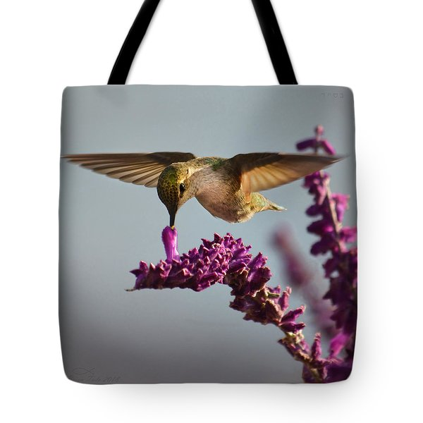 Anna's Hummingbird Sipping Nectar From Salvia Flower Tote Bag