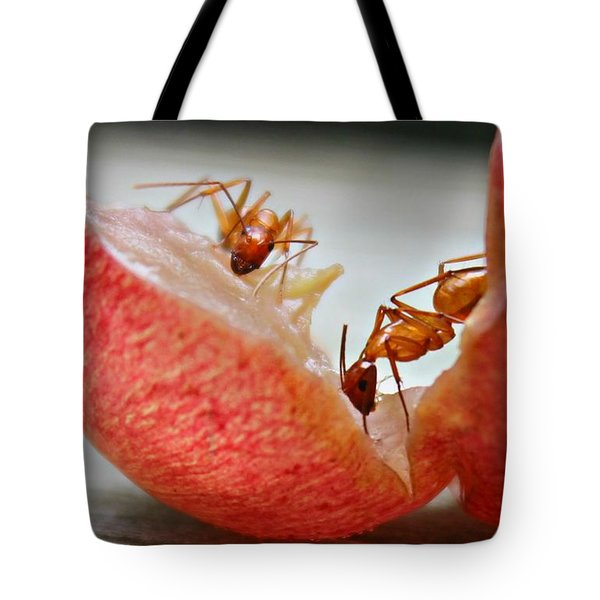 Tote Bag featuring the photograph Ants by Candice Trimble