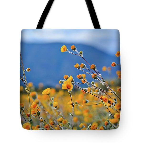 Tote Bag featuring the photograph Anza Borrego Wild Desert Sunflowers by Kyle Hanson
