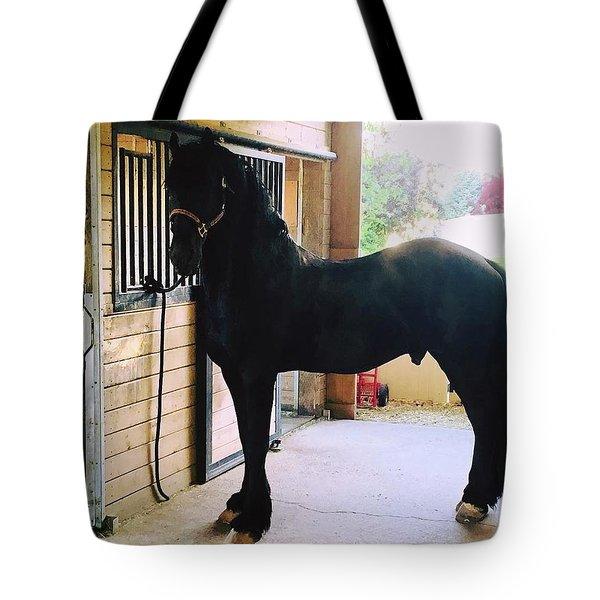 Apollo's Light Tote Bag