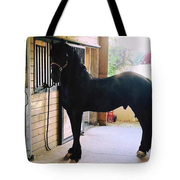 Apollo's Light Tote Bag