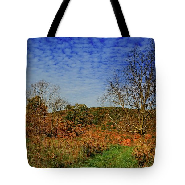 Tote Bag featuring the photograph Appalachian Trail Massachusetts In The Fall by Raymond Salani III