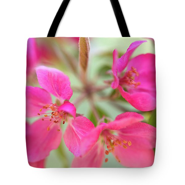 Tote Bag featuring the photograph Apple Blossom 6 by Leland D Howard