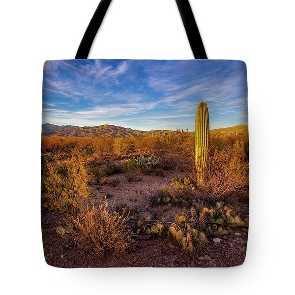 Tote Bag featuring the photograph  Approaching Evening In The Desert. by Lon Dittrick
