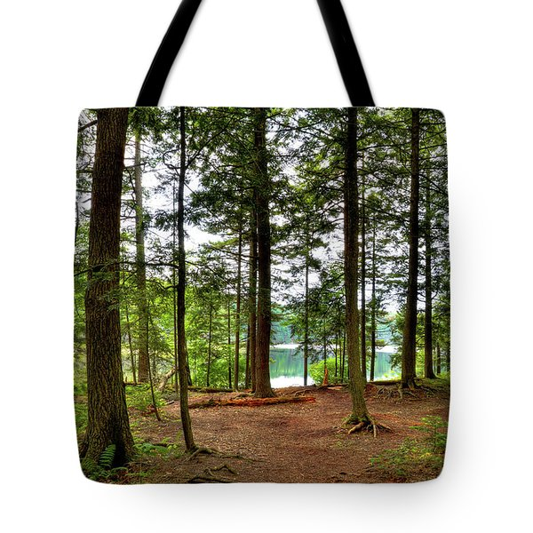 Tote Bag featuring the photograph Approaching Sis Lake by David Patterson