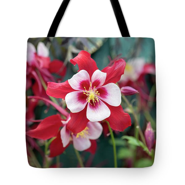 Aquilegia Swan Red And White Flower Tote Bag