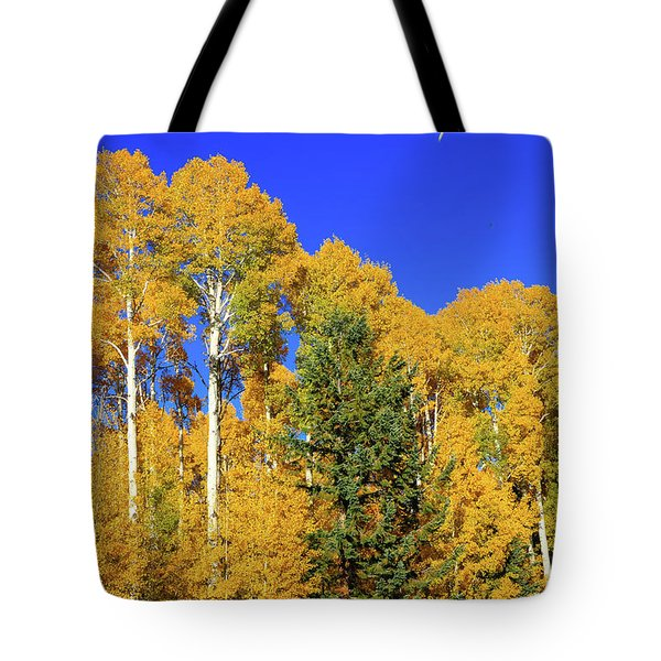 Arizona Aspens And Blowing Leaves Tote Bag