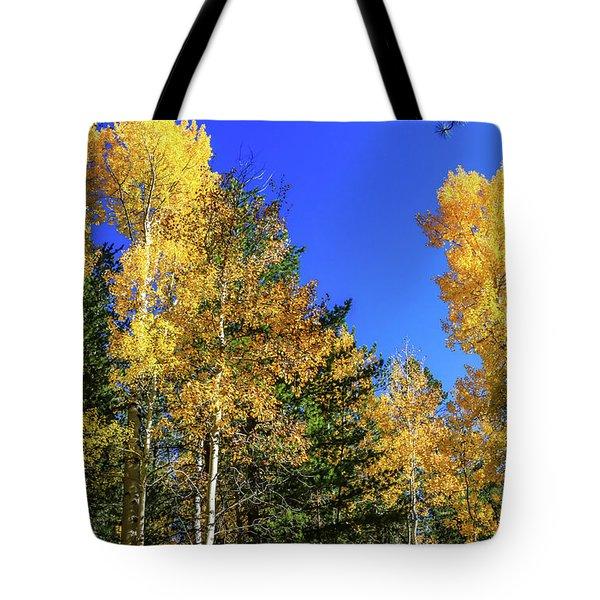 Arizona Aspens In Fall 1 Tote Bag