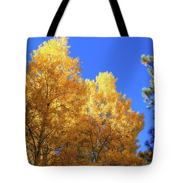 Arizona Aspens In Fall 2 Tote Bag