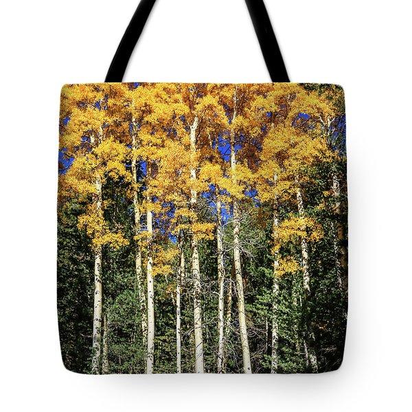 Arizona Aspens In Fall 3 Tote Bag