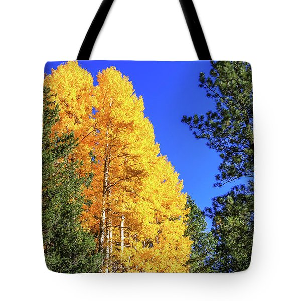 Arizona Aspens In Fall 4 Tote Bag