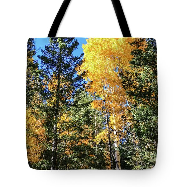 Arizona Aspens In Fall 5 Tote Bag