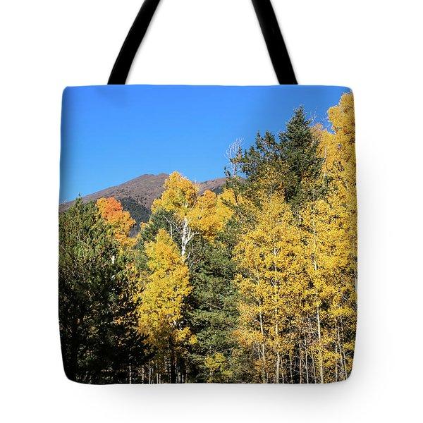 Arizona Aspens With Mountains Tote Bag