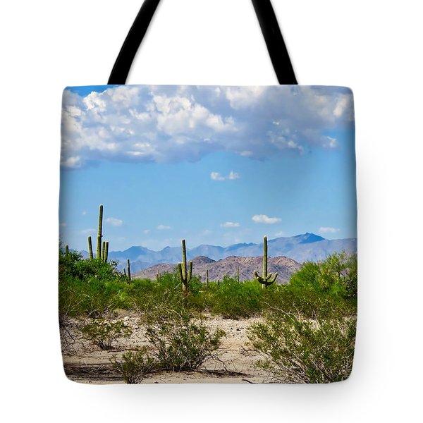 Arizona Desert Hidden Valley Tote Bag