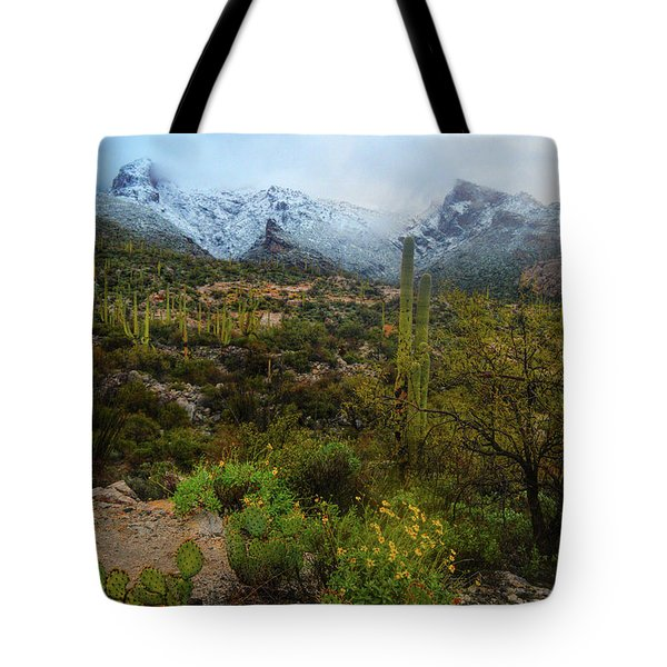Arizona Winter Light Tote Bag