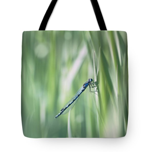 Around The Meadow 8 Tote Bag