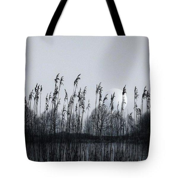 Around The Pond Tote Bag