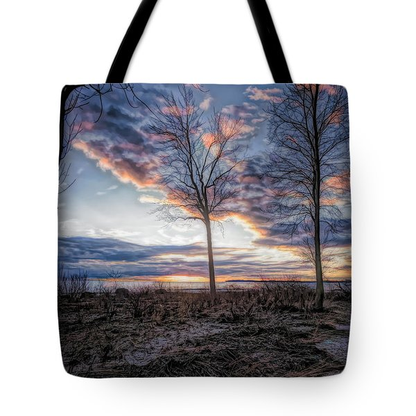 Artistic Shoreline View Tote Bag