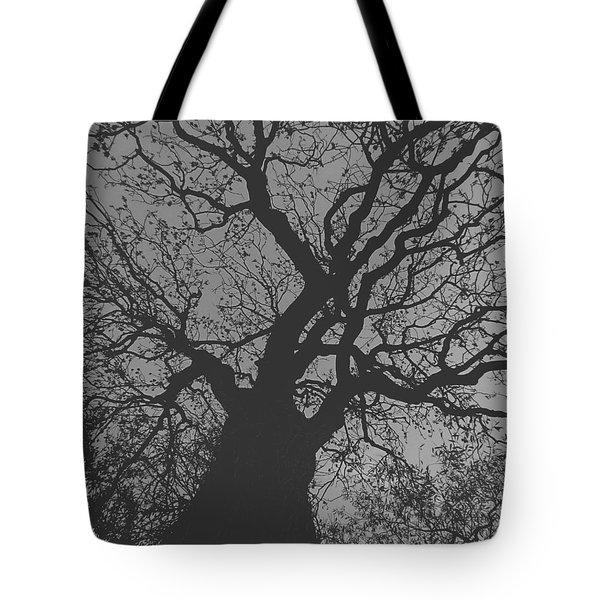 Ash Tree Tote Bag
