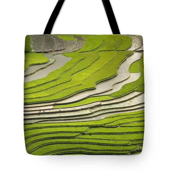 Asian Rice Field Tote Bag