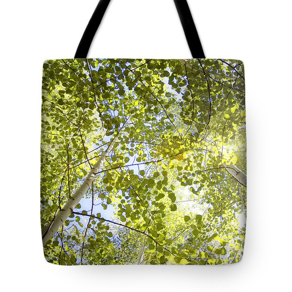 Aspen Canopy With Sun Flare Tote Bag