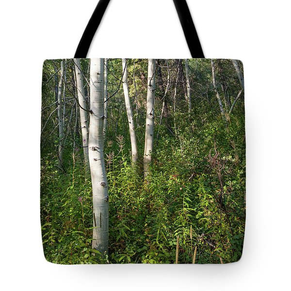 Tote Bag featuring the photograph Aspen Solitude by Lon Dittrick