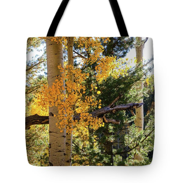 Aspen Tree Close Tote Bag