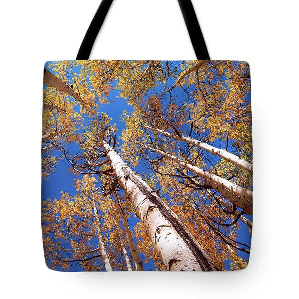 Tote Bag featuring the pyrography Aspen Trees Against The Sky In Crested Butte, Colorado.   by OLena Art Brand