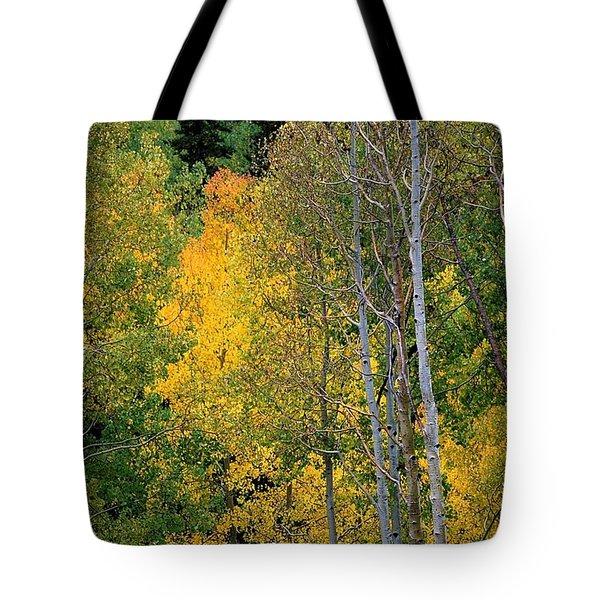 Aspens In Yellow Tote Bag