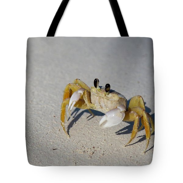 Tote Bag featuring the photograph Atlantic Ghost Crab by Thomas Kallmeyer