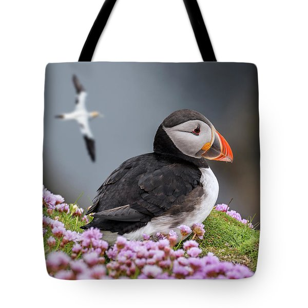 Atlantic Puffin And Soaring Gannets Tote Bag