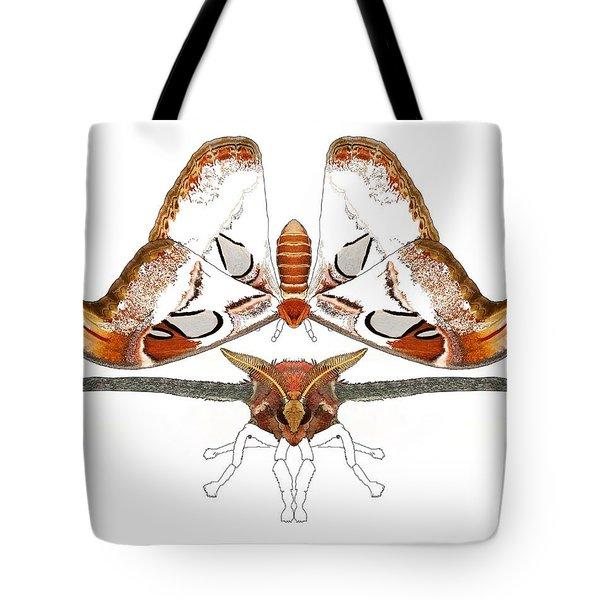 Atlas Moth2 Tote Bag