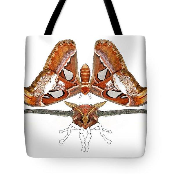 Atlas Moth4 Tote Bag