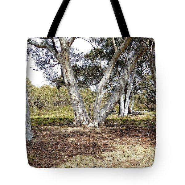 Australian Bush Scene Tote Bag