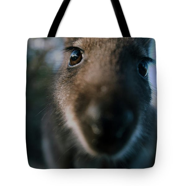 Australian Bush Wallaby Outside During The Day. Tote Bag