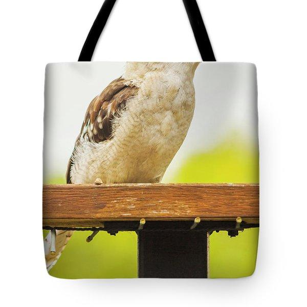 Australian Kookaburra Tote Bag